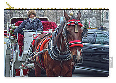 Horse Power Carry-all Pouch by Sandy Moulder
