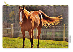 Horse's Tail Carry-all Pouch