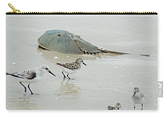 Carry-all Pouch featuring the photograph Horseshoe Crab With Migrating Shorebirds by Richard Bryce and Family