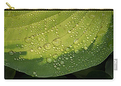 Carry-all Pouch featuring the photograph Hosta Drops by Jean Noren