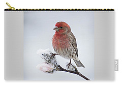 House Finch And Spring Snowfall - D010346 Carry-all Pouch