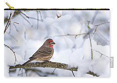 Carry-all Pouch featuring the photograph House Finch In Snow by Brian Bonham
