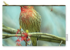 Carry-all Pouch featuring the photograph House Finch In Spring by Rodney Campbell