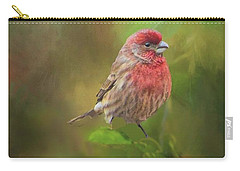 Carry-all Pouch featuring the photograph House Finch On Apple Branch 2 by Janette Boyd