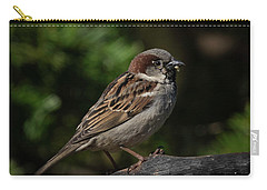 House Sparrow 2 Carry-all Pouch