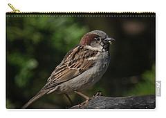House Sparrow 2 Carry-all Pouch