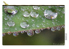How Many Raindrops Can A Leaf Holds. Carry-all Pouch