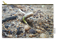 Humble Beginnings  Carry-all Pouch by Angela J Wright
