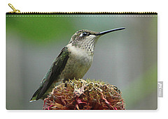 Humming Bird Atop Bee Balm Carry-all Pouch by David Stasiak