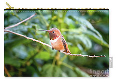Humming Bird On Stick Carry-all Pouch by Stephanie Hayes