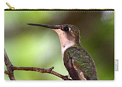 Hummingbird - Afternoon Ruby Carry-all Pouch by Travis Truelove