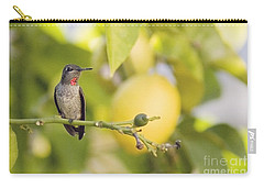 Carry-all Pouch featuring the photograph Hummingbird In Lemon Tree by Cindy Garber Iverson