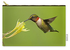 Hummingbird Carry-all Pouch by Mircea Costina Photography