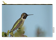 Hummingbird On Watch Carry-all Pouch