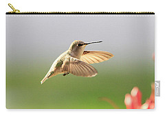 Hummingbird Profile Carry-all Pouch by Shoal Hollingsworth