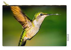 Hummingbird Sparkle Carry-all Pouch