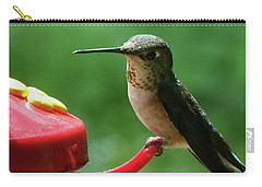 Hummingbird Takes A Break Carry-all Pouch by Mark Alan Perry