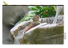 Hummingbirds Do Take Baths Carry-all Pouch by Jennie Marie Schell