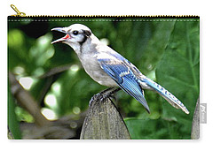 Carry-all Pouch featuring the photograph Hungry Bird by Carol Bradley