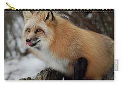 Carry-all Pouch featuring the photograph Hungry Fox by Richard Bryce and Family