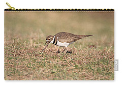 Hungry Killdeer Carry-all Pouch by Karen Silvestri