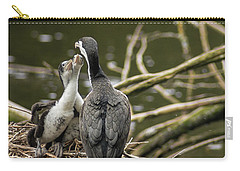 Hungry Pied Shag Chicks Carry-all Pouch