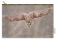 Hunting Barred Owl  Carry-all Pouch by Mircea Costina Photography