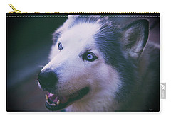 Husky Carry-all Pouch by Dennis Baswell