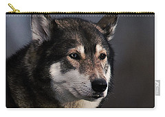 Husky Carry-all Pouch by  Newwwman