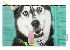 Husky With Tie Carry-all Pouch by Stephanie Hayes