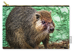 Hutia, Tree Rat Carry-all Pouch