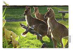 Carry-all Pouch featuring the photograph I Fly To You by Evelyn Tambour