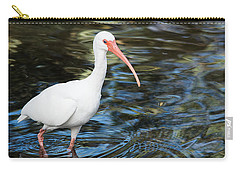 Ibis In The Swamp Carry-all Pouch by Kenneth Albin
