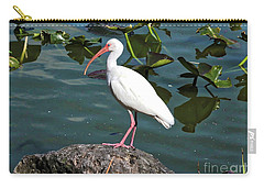 Ibis Rock Carry-all Pouch by Carol Groenen