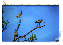 Ibis Trio Carry-all Pouch by Tom Claud