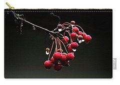 Iced Crab Apples Carry-all Pouch