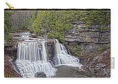 Iconic Falls Carry-all Pouch