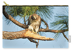 If Looks Could Kill - Hawk Carry-all Pouch