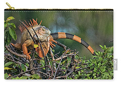 Iggy Carry-all Pouch by Don Durfee