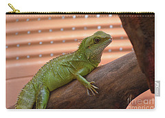 Iguana Balancing On A Tree Branch Carry-all Pouch by DejaVu Designs