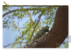 Iguana Climbing Up A Tree Trunk Carry-all Pouch by DejaVu Designs
