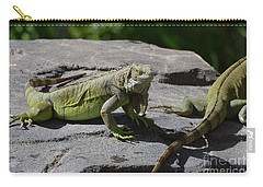 Iguana Perched On A Rock In The Sun Carry-all Pouch by DejaVu Designs