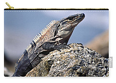 Carry-all Pouch featuring the photograph Iguana by Sally Weigand