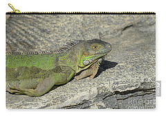 Iguana Warming In The Sunshine Carry-all Pouch by DejaVu Designs