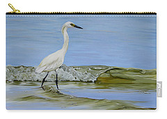Carry-all Pouch featuring the painting Illumination by Phyllis Beiser