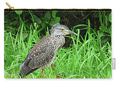 Carry-all Pouch featuring the photograph Immature Black Crown Heron by Rosalie Scanlon