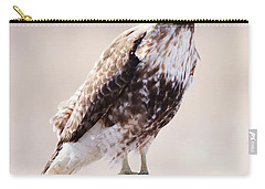 Immature Red Tailed Hawk Carry-all Pouch