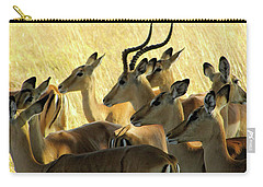 Impalas In The Plains Carry-all Pouch