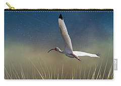 In Flight 1 Carry-all Pouch by Phil Mancuso