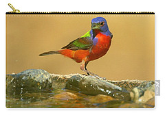In Living Color Carry-all Pouch by Myrna Bradshaw